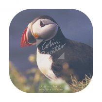 Atlantic Puffin Coaster