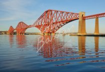 Forth Bridge Postcard (H Std CB)