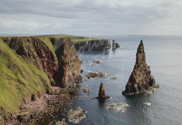 Duncansby Head & Stacks, Caithness Postcard (H Std CB)