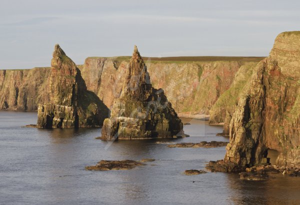 Stacks of Duncansby, Caithness Postcard (H Std CB)
