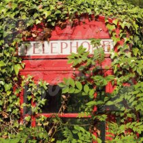 Old Telephone Box, Perthshire Greetings Card (CB)