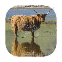 Highland Cow Reflection Coaster