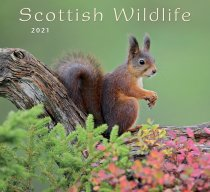 2021 Calendar Scottish Wildlife (Mar)